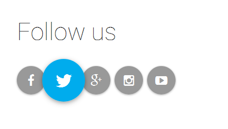 follow-us-pure-css-social-buttons